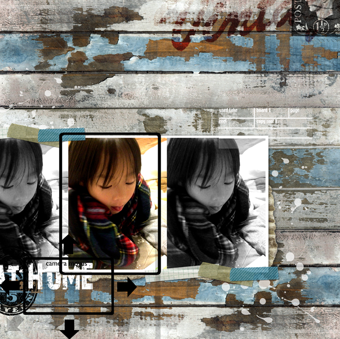 20120221_dai.jpg
