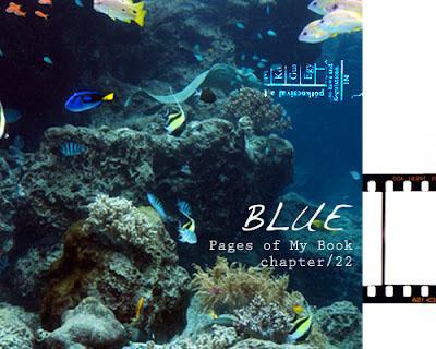 pmb_blue.jpg
